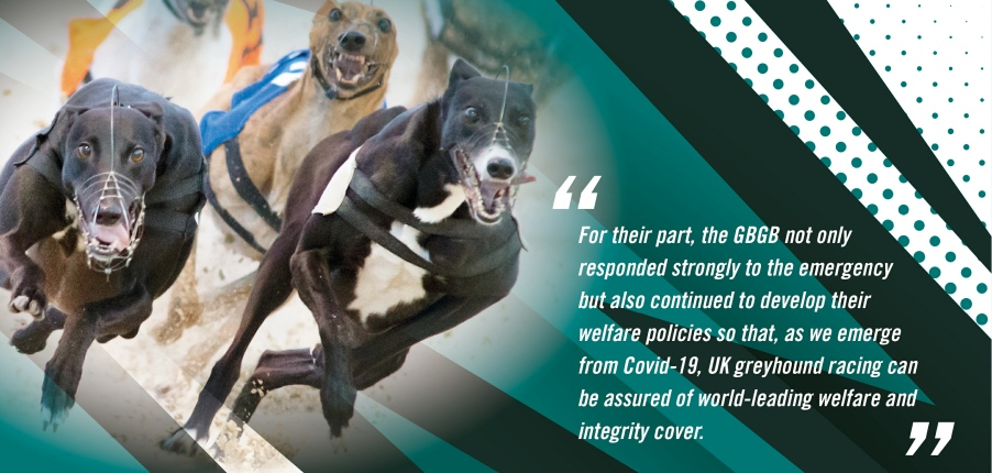 Chairman's statement banner regarding the Greyhound Board of Great Britain welfare and integrity cover